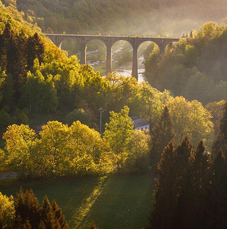 paysage ensoleillé dans les Ardennes