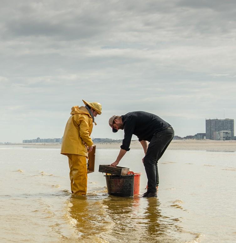Sterrenchef Willem Hiele en een lokale paardenvisser bekijken de kwaliteit van de garnalen bij de Noordzee.