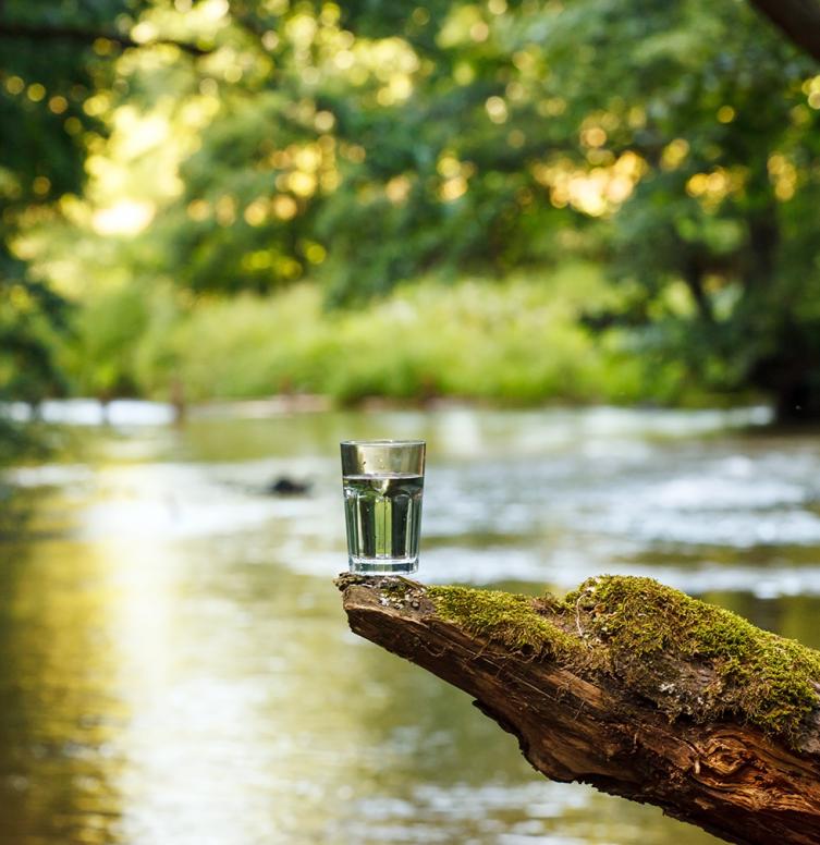 natuurlijk water in een glas in de natuur
