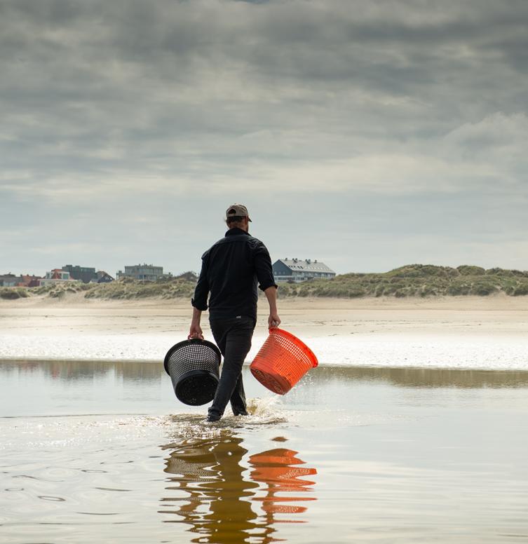 Le chef étoilé Willem Hiele avec ses produits locaux dans la mer du Nord.